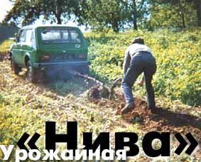 Урожайная Нива